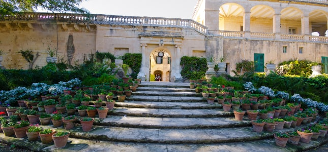 Malta guided tour by Amy Pace
